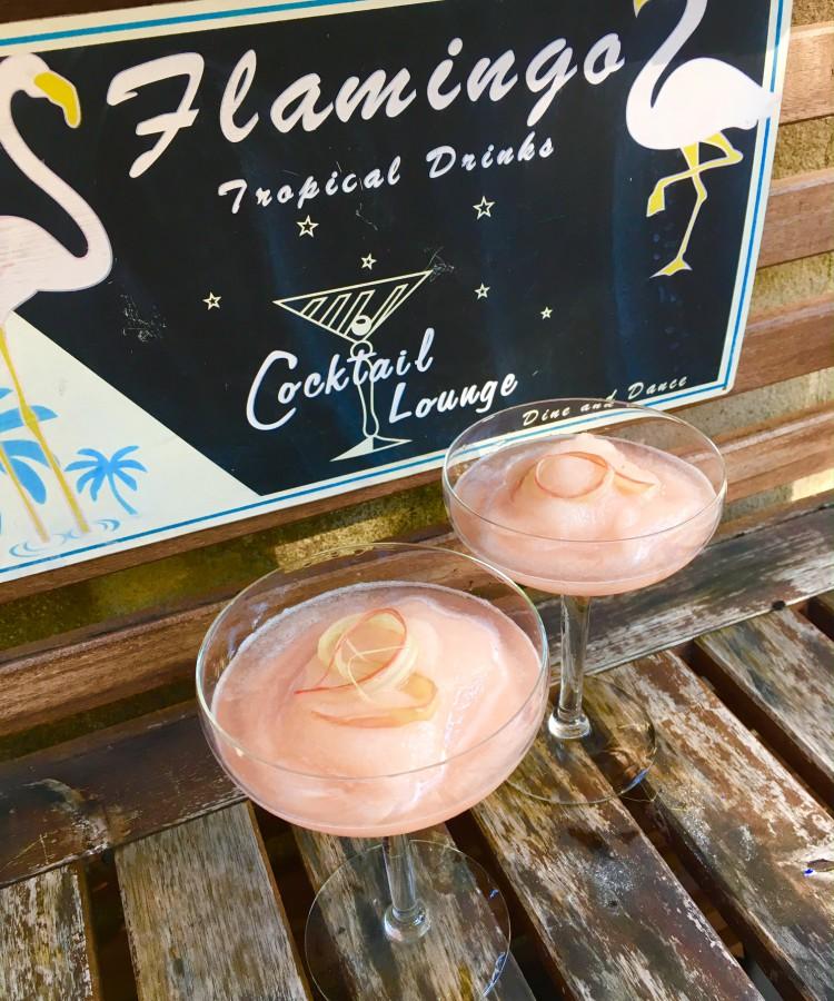 FlamingoFennelSlush